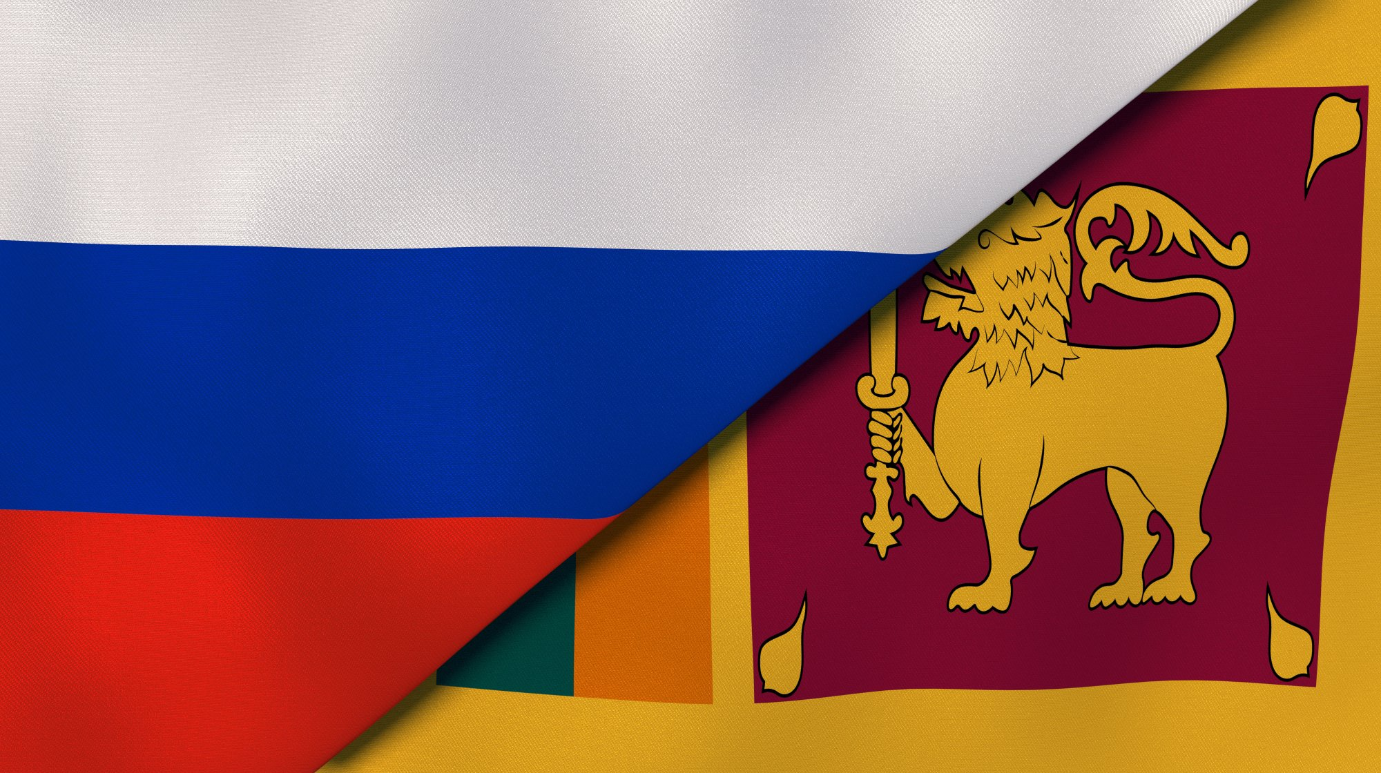 It is planned to double the commodities' turnover between Russia and Sri Lanka